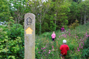 A Young Family Walking Through Flowers with a signpost showing an acorn in the foreground