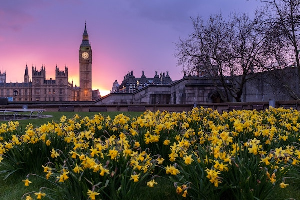 View of Houses of Parliament and Big Ben in London