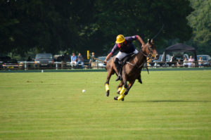 Man on a horse playing polo