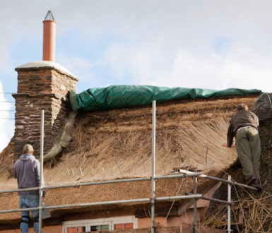 Two men thatching a roof