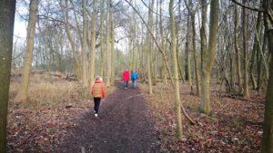 People walking in woodland in the winter