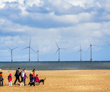 Family on a pebbly beach with dogs. In the background there are wind turbines