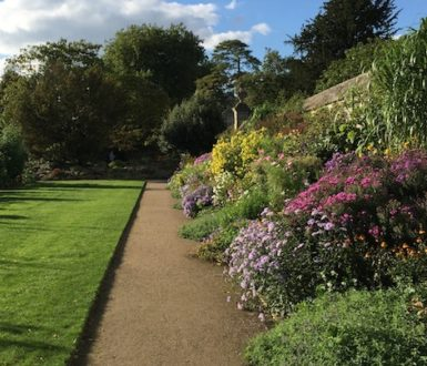 The Oxford Botanic Garden, one of the best gardens in Britain